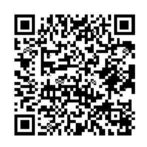 KOKUYO コクヨ 文房具 ファイル\A4 クリヤーホルダー スーパークリヤー10(テン) A4 クリアー クリヤー ファイル 事務用品 スーパークリヤー10 スケジュール帳 手帳のタイムキーパー