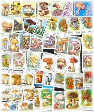 海外使用済切手 (きのこ キノコ 30枚)