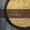 ケシの実 Poppy Seed 【1kgパック】 / けしの実 レビューでタイカレープレゼント あす楽