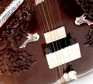 【PALOMA社製】高級シタール+グラスファイバーケース 【送料無料&あす楽】 楽器 Sitar インド 弦楽器 民族楽器 アジア エスニック