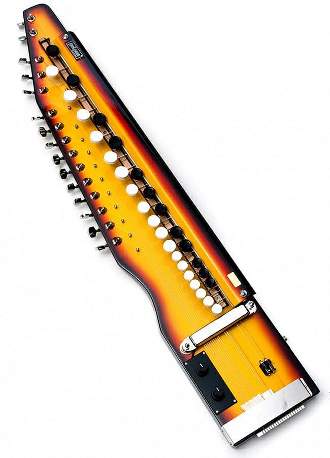 弦楽器, その他  Shahi Baja