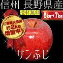 【感謝の増量!!】長野県産 サンふじ 約5kg→約7kg 2...