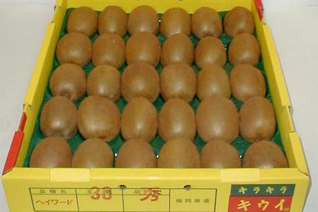福岡産グリーンキウイフルーツ約3.6kg中玉30個入り(130g/1個)キラキラキウイ|グリーンキウイ