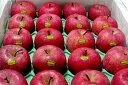 """ふじりんご ギフト 青森産 """"いかりりんご""""「超新鮮!ふじ」10kg 中玉36〜40個入り ふじりんご フルーツギフト ●店長おすすめ果物です 夏でも旬の美味しさが楽しめます♪林檎 gift ふじりんご"""
