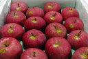 """ふじりんご ギフト 青森産""""いかりりんご""""「超新鮮!ふじ」10kg 大玉28〜32個入り ふじりんご ●店長おすすめ果物です ふじりんご 夏でも旬の美味しさが楽しめます♪林檎gift フルーツギフト ふじりんご"""