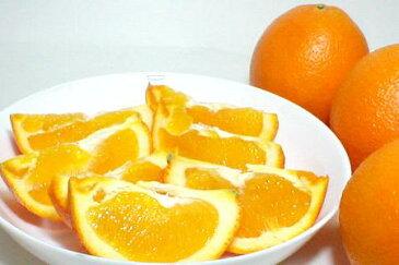 ネーブルオレンジ 88個入り 約17kg甘くてすっきり♪朝の始まりはスイートオレンジで!【88サイズ】
