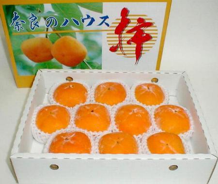 トバイサフルーツ『奈良産 ハウス柿 10個入り化粧箱』