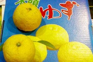 徳島産 柚子(ユズ) 11〜13個入り和食の美味しさを引き立てる柑橘がゆずです5P23oct10