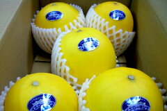 愛知産 イエローキングメロン5kg 2Lサイズ5個入り鮮やかな黄色い果皮の中に、白い果肉に甘い...