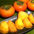 「あさくら」の富有柿 (ふゆうがき) 冷蔵貯蔵品福岡産  3Lサイズ 15個入り富を有すると呼ばれる柿は、緻密でとろけるような日本を代表する甘ガキです
