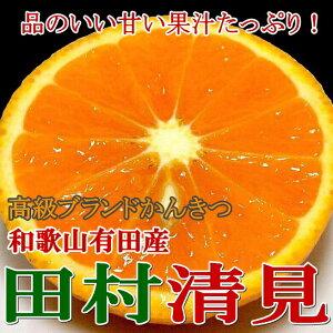 【送料無料】「訳あり」 田村清見オレンジ(きよみおれんじ) 5kg(S〜3L)サイズはお任せで…