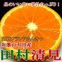 和歌山産田村清見オレンジ