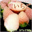【白いちご】福岡産 博多 淡雪(あわゆき)イチゴLサイズ 17個前後入り×2パック入り箱 54…