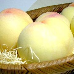 【高級桃】岡山もも ホワイトピーチ岡山名産 白い桃 4kg 9〜10個入り○ご贈答おすすめ果物...