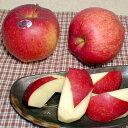 りんご 世界一リンゴ(せかいいちりんご)青森産 約5kg 産地箱(超大玉8〜11個入り) ※希少品のためお時間頂戴することがございます ..