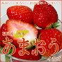 博多甘王イチゴ/あまおういちご