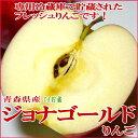 (りんご リンゴ 林檎 アップル)ジョナゴールド 約10kg...