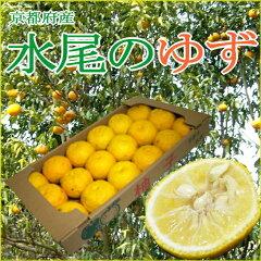 水尾の柚子(ゆず) 1.5kg 小玉 18個〜21個前後入り 京都産奥嵯峨のユズの里の香り高い…
