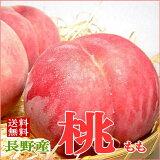 モモ【送料無料】長野の桃(もも) 約2.5kg 9〜11個入り 長野産