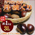 【送料無料】京都産 丹波栗(たんばくり)約1kg 大玉 3Lサイズ以上(大きさにばらつきがあります)秋の京やさい※希少品のためお届け日はご指定いただけません