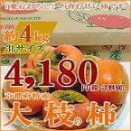 京都産 大枝柿(おおえのかき) 「冨有柿」大玉 3Lサイズ12個入り大枝の柿は京都西山「愛宕おろし」の寒暖の差が濃い甘味のカキを生みます! 甘柿