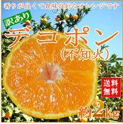オレンジ デコポン