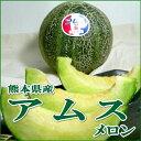 【お試し!送料無料】熊本産 アムスメロン 6〜7個入り 母の日