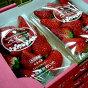 大分産 ベリーツ いちご 大粒 2L 約270g×2パック|苺 イチゴ 新イチゴ 甘い ストロベリー 大玉