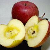 長野産 信濃高原の サンふじ りんご 約10kg 特大 20〜24個入り|甘いりんご ふじりんご ふじ りんご 林檎 アップル お歳暮
