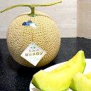 京都産 あみの琴引メロン(ことびきメロン)Lサイズ 2個入り「浜」●店長おすすめ果物です 黄金色のメロン とても甘い果汁♪ 丹後半島の幻の逸品メロンです 夏メロン 丹後地域特産 お取り寄せグルメ