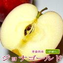 青森産 ジョナゴールドりんご 約5kg 大玉 14〜16個入り CA貯蔵|リンゴ 林檎 アップル