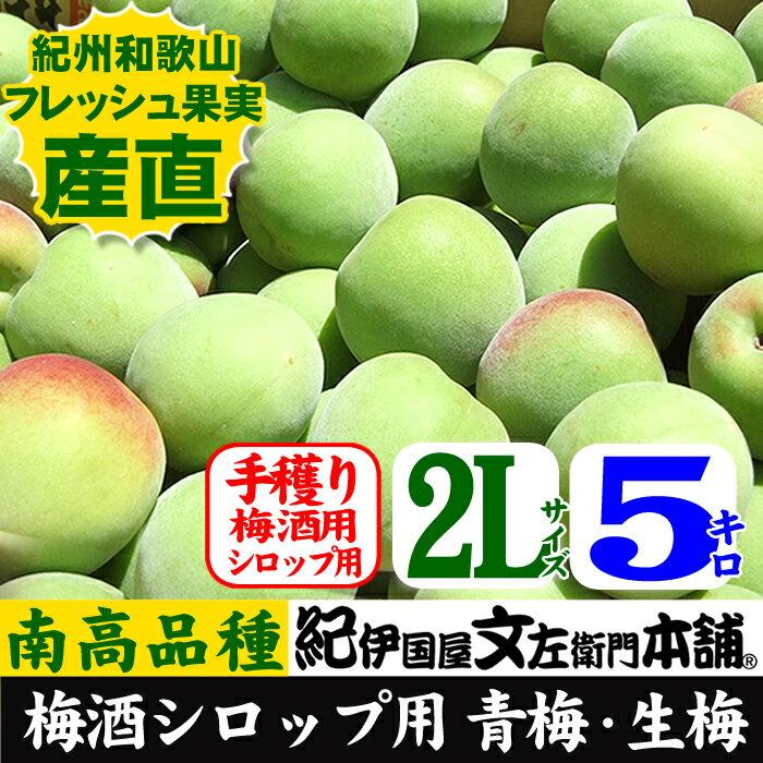 フルーツ・果物, 梅  () 2L 5kg 5