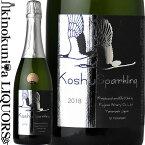 フジッコワイナリー / フジクレール 甲州スパークリング [2019] スパークリングワイン 白 辛口 750ml / 日本 山梨県 Fujiclair Koshu Sparkling 日本ワイン