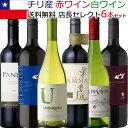チリワイン6本セット (赤ワインミディアムボディ4本+白ワイン辛口2本)【送料無料S】【ミックスS】【飲み比べS】【セレクトS】【セット】【あす楽】【smtb-tk】【楽ギフ_のし宛書】【RCP】6つのブドウ品種が楽しめる