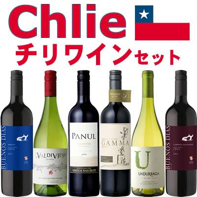 チリワイン 6本セット(赤ワイン ミディアムボディ4本+白ワイン 辛口2本)【ミッ...