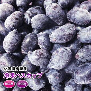 【北海道十勝産】【冷凍ハスカップ500g】平成28年7月収穫予定です!十勝ベリーファーム