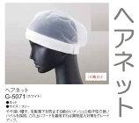 本日発送毛髪落下防止ヘアーネット(ホワイト)10枚セットG5070