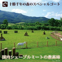 北海道十勝清水町十勝千年の森チーズ工房十勝シェーブル・炭