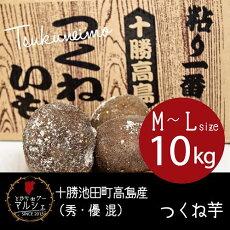 北海道十勝池田町高島産つくね芋【10kg】(秀・優混)【M〜Lサイズ】野菜/ヤマノイモ