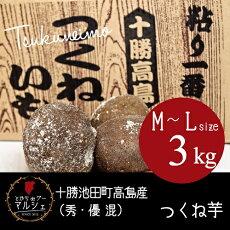 北海道十勝池田町高島産つくね芋【3kg】(秀・優混)【M〜Lサイズ】野菜/ヤマノイモ