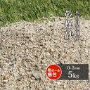【送料無料】芝生用 荒目砂 木曽川流域産 洗い砂 乾燥砂 5kg   0-2mm 庭 砂 すな 焼砂 焼き砂 乾燥 目砂 目土 川砂 ゴルフ ゴルフ場 グリーン 芝 芝生 補修 砂あそび 国産 天然 木曽川 粗め さらさら サラサラ 放射線量報告書付