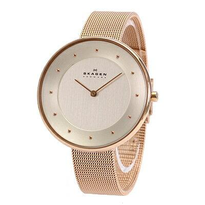 SKAGEN/スカーゲンSKW2142/腕時計