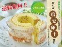 【送料無料!!】伊豆産ブランド卵使用《天城輪道》バウムクーヘン