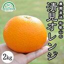 清見オレンジ 清見タンゴール みかん 2kg 送料無料 無農薬 和歌山 産地直送 グリーンジャンクション
