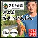 無農薬 にんじん 人参 葉付き人参 送料無料 3kg 無農薬ニンジン 西日本 葉付 静岡産 化学肥料不使用 通販 宅配 産地直送 農家直送