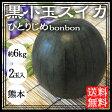 黒小玉スイカ(ひとりじめbonbon)【送料無料】約6kg【お中元】【贈答】【ギフト】【農園直送】 熊本|贈り物|スイカ|通販|岡山農園|