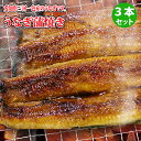 うなぎ蒲焼き 3本セット|鰻、愛知県産ウナギかば焼き