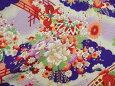 茶屋辻(紫)