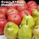 送料無料!冬味覚セット 訳あり 自宅用 サンふじ3kg+ラフランス2kg 合計5kg前後【RCP】さんふじ、りんご、林檎、リンゴ、洋梨、西洋ナシ、訳あり