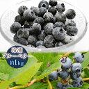 送料無料 冷凍ブルーベリー 約1kg ブルーベリー、山形県産...